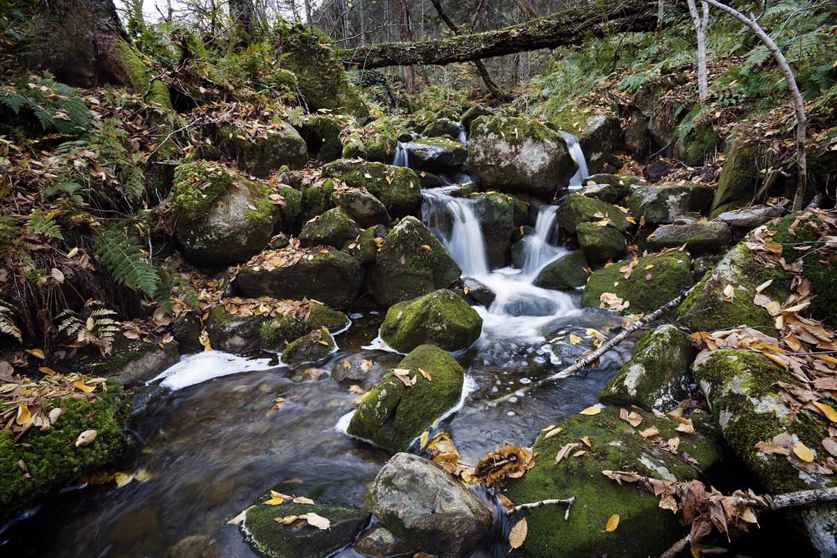 parc national de la Jacques-Cartier Stoneham-et-Tewkesbury Québec Canada